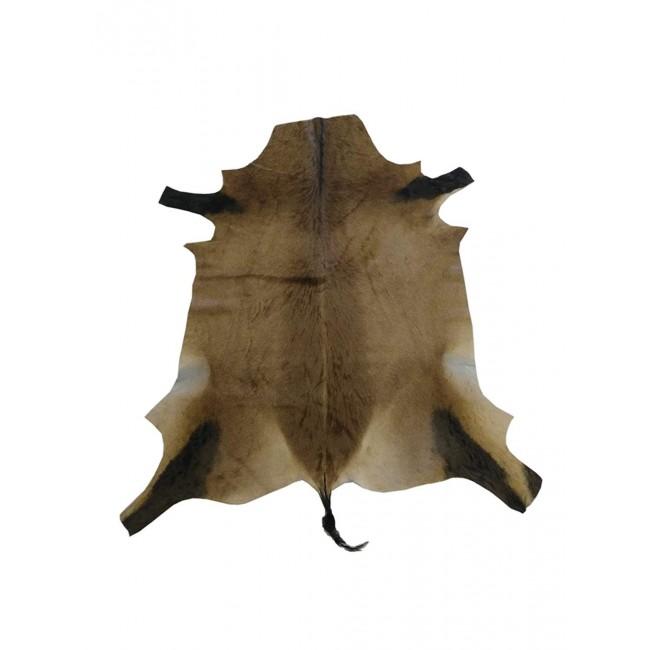 Tapis en véritable peau d'antilope africaine 160x120 cm