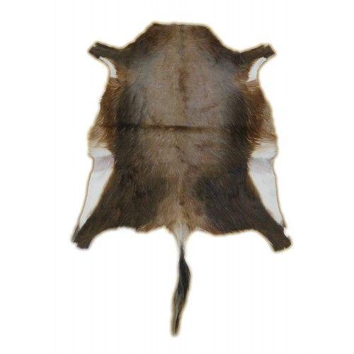 Tapis en peau de blesbok...