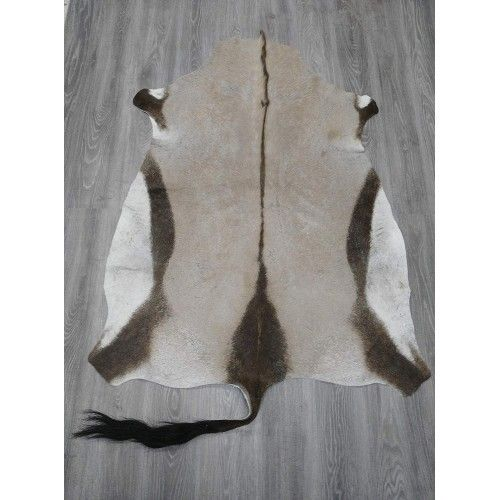Oryx Area Rug, 62x47 in,...