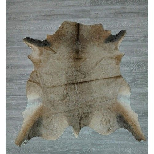 Antelope Area Rug, 53x53...