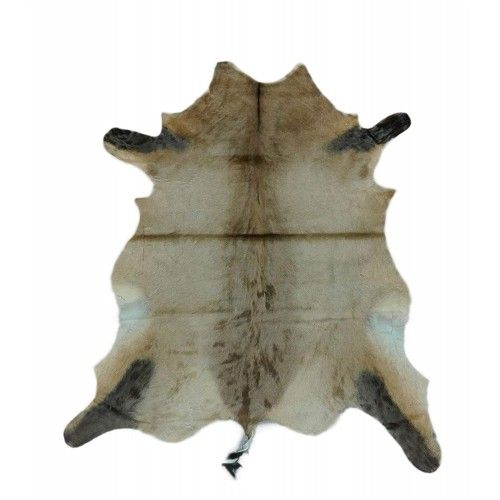 Antelope Area Rug, 55x47...
