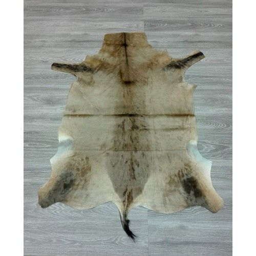 Antelope Area Rug, 57x43...