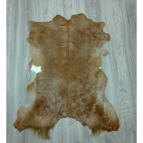 Goat Area Rug, 33x29 in,...