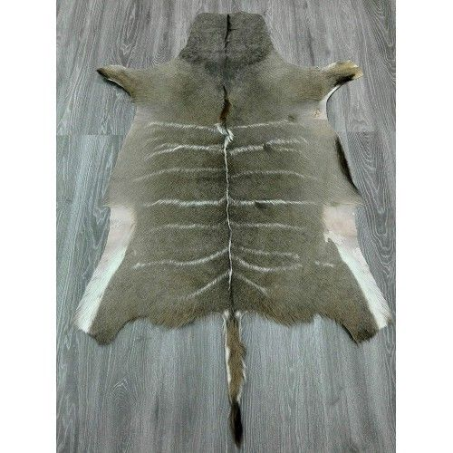 Kudu Area Rug, 62x45 in,...