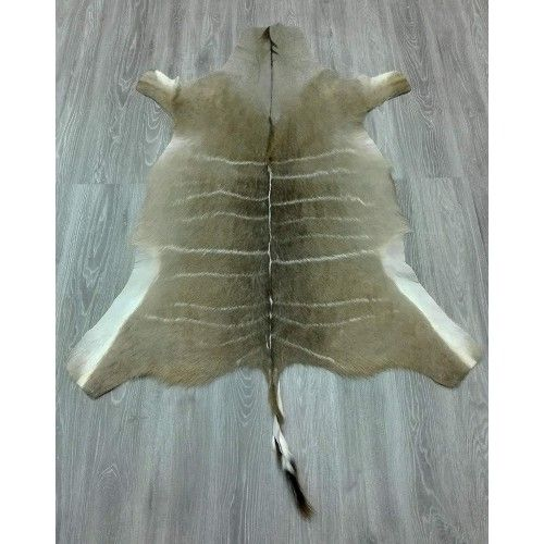 Kudu Area Rug, 64x53 in,...