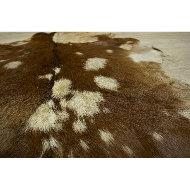 Zerimar Goat Area Rug, Area Rug Living Room, 41x27 in, Natural Rugs 5