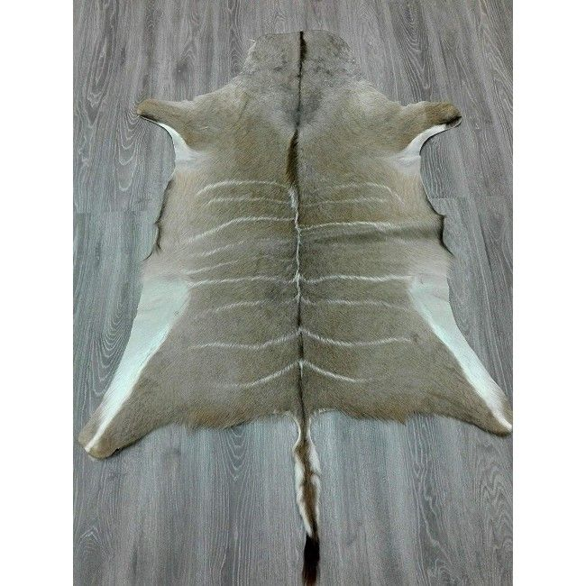 Kudu Area Rug, 64x51 in, Exotic Area Rug, Area Rugs Living Room