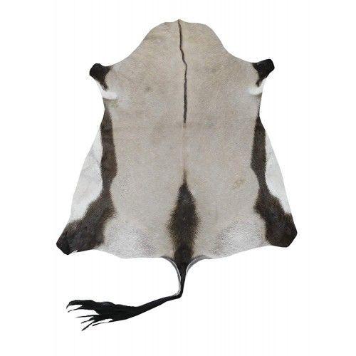 Alfombra piel Oryx antílope...